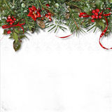 Christmas border with firtree, holly and poinsettia on white bac Stock Photography