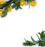 Christmas border frame of fir tree branch on white background isolated Royalty Free Stock Image