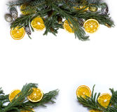 Christmas border frame of fir tree branch on white background isolated Royalty Free Stock Images