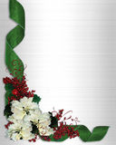 Christmas Border Frame Flowers. Christmas design with white poinsettias and green damask ribbons for greeting card, invitation or background. Image and royalty free illustration