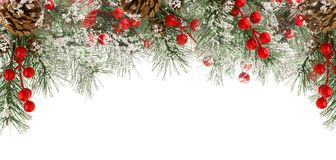 Christmas border of green fir branches with snow, red berries and cones isolated on white. Background royalty free stock photo