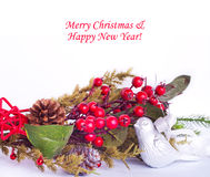 Christmas border with hawthorn, fir tree and bird Stock Images