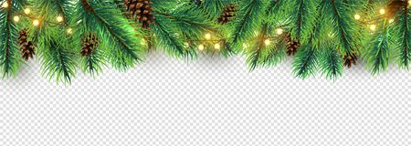 Christmas border. Holiday garland isolated on transparent background. Vector Christmas tree branches, lights and cones