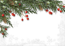 Christmas border with holly isolated on white Stock Photography