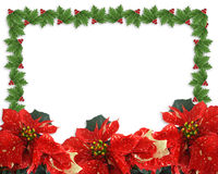 Christmas border Holly and poinsettias royalty free stock image