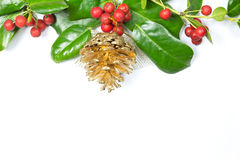 Christmas Border of holly on white Royalty Free Stock Image