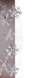 Christmas Border with Metallic Snowflakes Stock Photos