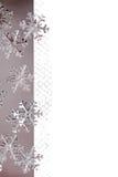 Christmas Border with Metallic Snowflakes Stock Photos