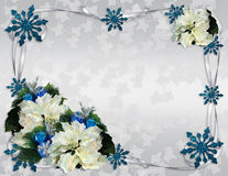 Christmas border poinsettias elegant Stock Images