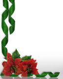 Christmas border Poinsettias and ribbons. Christmas design with red poinsettias and green damask ribbons for greeting card, invitation, border  or background Royalty Free Stock Photography