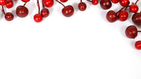 Christmas border from red berries. Christmas decoration from red berries isolated on white background Stock Image