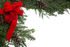 Christmas border with red bow and live pine boughs Stock Image