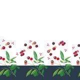 Christmas border with rose plant and buds. vector illustration