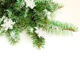Christmas Border with Snowflake and Xmas Tree Twig Stock Photo