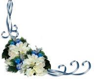 Christmas Border White Poinsettias Stock Image