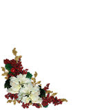 Christmas Border White Poinsettias Stock Image