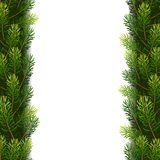 Christmas borders from fir branches. Christmas borders from fir tree branches. Vector illustration for your design Stock Image