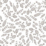 Christmas botanical seamless pattern with Fir cones. Thin line vector design. Xmas background. n Stock Photo
