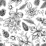 Christmas botanical seamless pattern. Hand drawn vector Royalty Free Stock Image