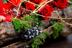 Christmas bouquet of flowers. Blue berries with red roses, wood and green moss Royalty Free Stock Photography