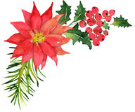 Christmas bouquet with poinsettia Royalty Free Stock Photo