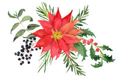 Free Christmas Bouquet With Poinsettia And Berries Royalty Free Stock Photo - 98021555