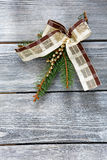 Christmas bow and fir branch Stock Photos