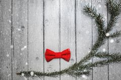 Christmas bow tie decoration with snow on white wooden background. Holiday New Year postcard design.  royalty free stock photo