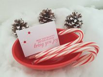 Christmas Bowl With Candy Canes, Pine Cones And A Christmas Card stock images