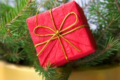 Christmas box. Red Christmas box on the Christmas tree Stock Photography