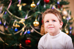 Christmas boy portrait Stock Photo