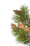 Christmas branch Royalty Free Stock Image