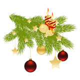 Christmas branch. Royalty Free Stock Image