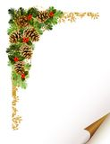 Christmas  branch Stock Image