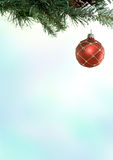 Christmas Branch & Bauble Royalty Free Stock Photography