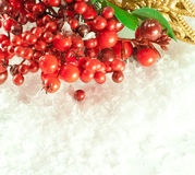 Christmas branch of berries with a gold Stock Photo