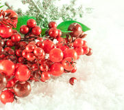 Christmas branch of berries with a silver royalty free stock photography