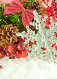 Christmas branch of berries with a silver Royalty Free Stock Photo