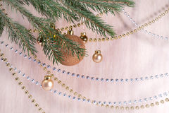 Christmas branch with golden balls . Stock Images