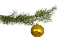 Christmas branch with golden bauble Stock Photography