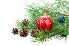 Christmas branch tree with decoration Stock Images