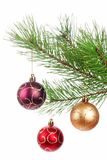 Christmas branch tree with decoration Royalty Free Stock Image