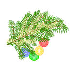 Christmas branch with various baubles vector Royalty Free Stock Photography