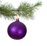 Christmas branch with violet bauble Royalty Free Stock Images