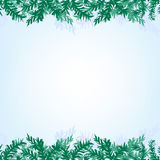 Christmas branches background. The illustration of blue Background with new year branches. Vector image Stock Photo