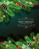 Christmas branches and cones Royalty Free Stock Image