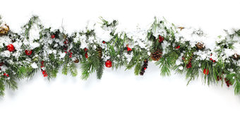 Christmas branches covered in snow stock photos
