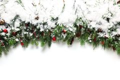 Christmas branches covered in snow Stock Photo
