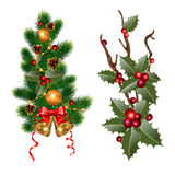Christmas branches Stock Image