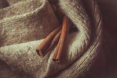 Christmas. Brown spices, cinnamon sticks, food Royalty Free Stock Photography
